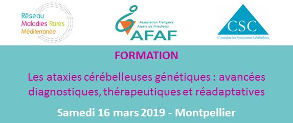 Formation Ataxies_20190316_2